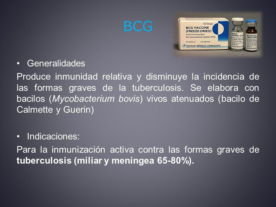 BCG Generalidades.