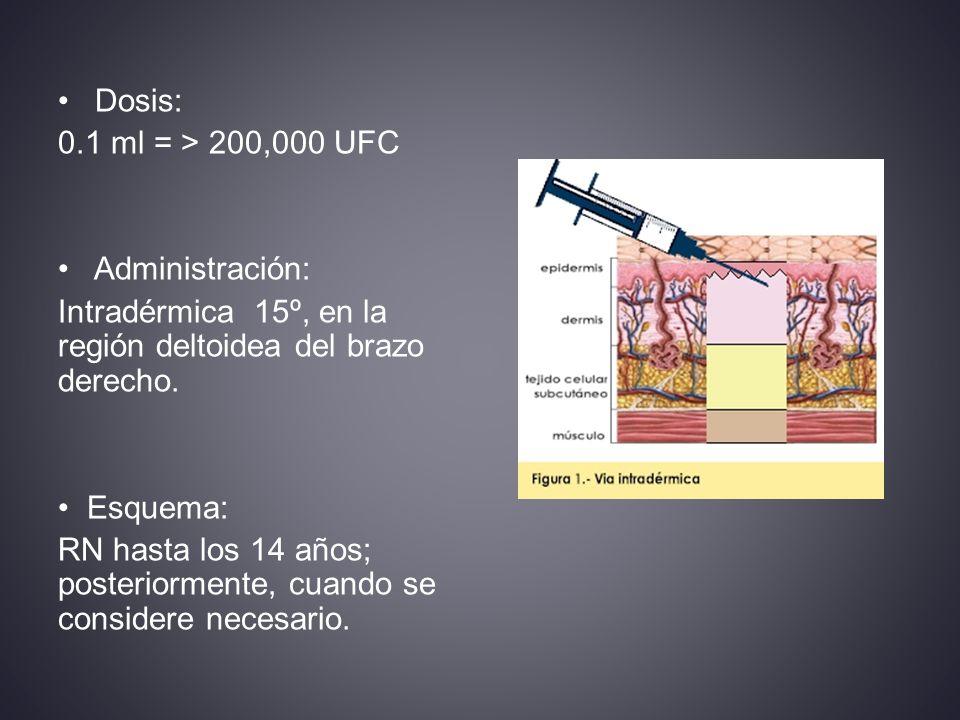 Intradérmica 15º, en la región deltoidea del brazo derecho.