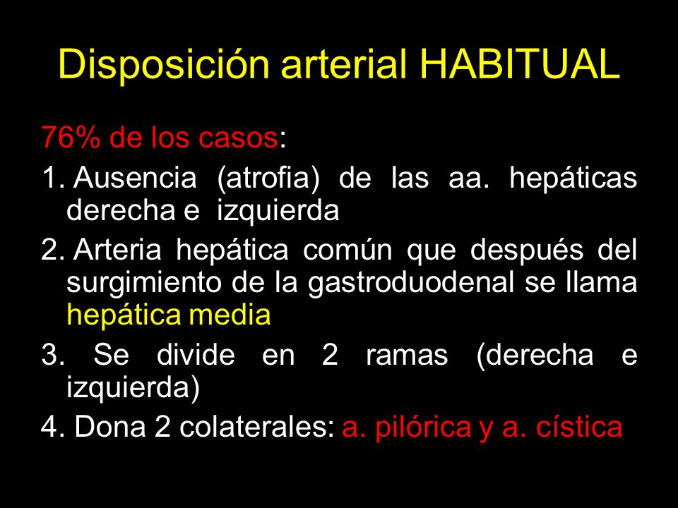 Disposición arterial HABITUAL