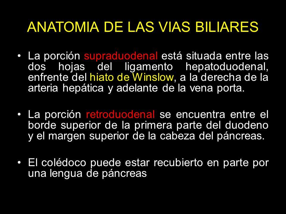ANATOMIA DE LAS VIAS BILIARES
