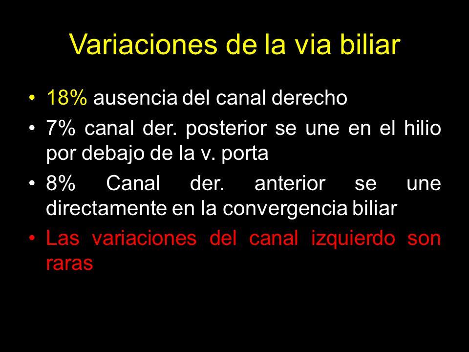Variaciones de la via biliar