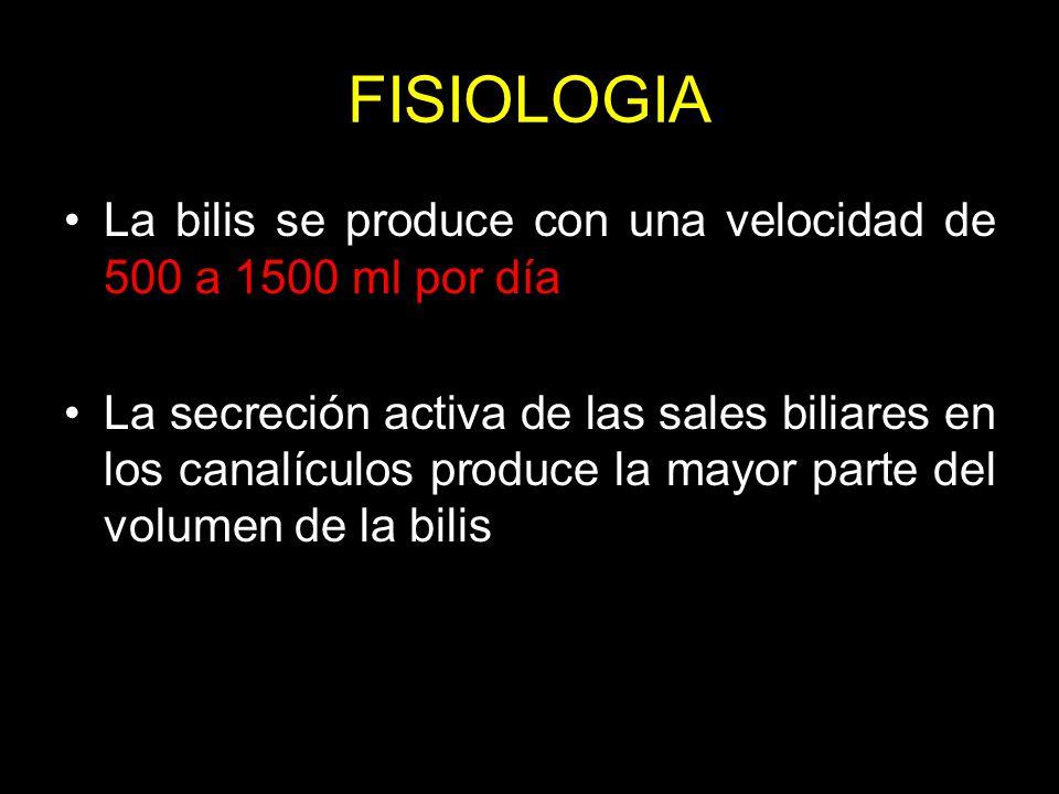 FISIOLOGIA La bilis se produce con una velocidad de 500 a 1500 ml por día.