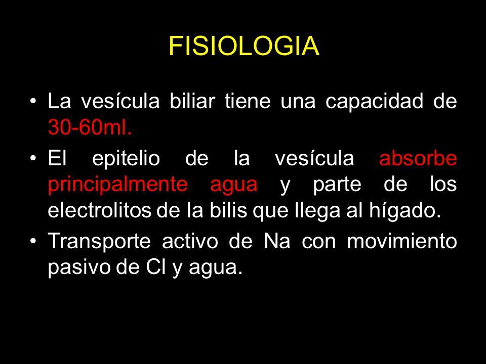 FISIOLOGIA La vesícula biliar tiene una capacidad de 30-60ml.