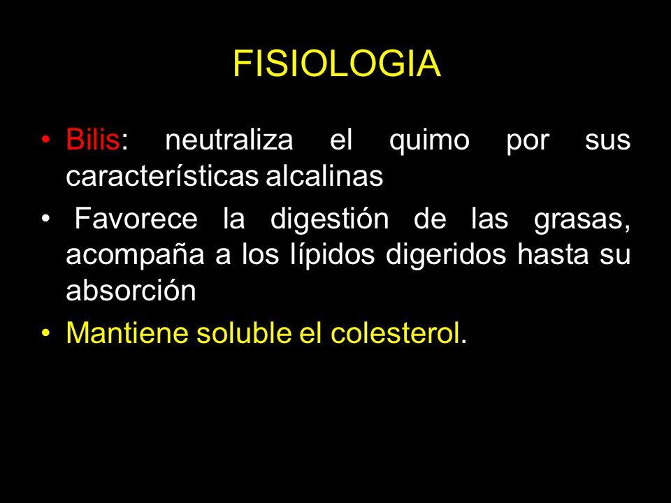 FISIOLOGIA Bilis: neutraliza el quimo por sus características alcalinas.