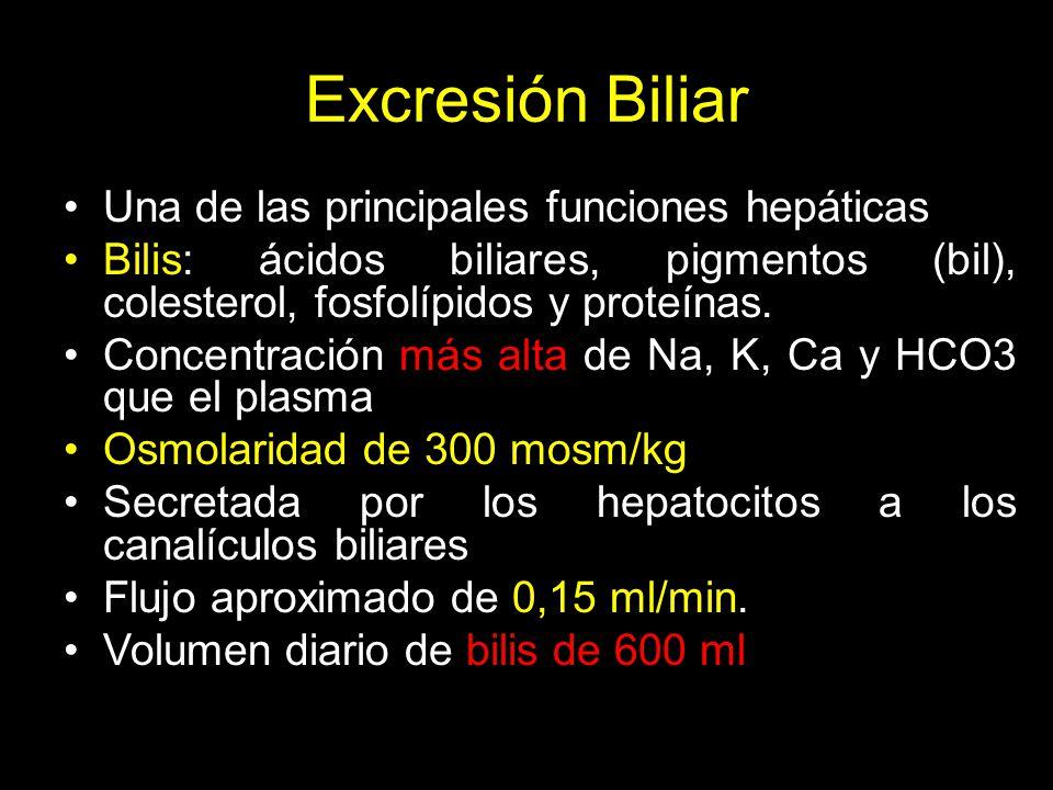 Excresión Biliar Una de las principales funciones hepáticas