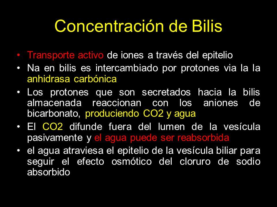 Concentración de Bilis
