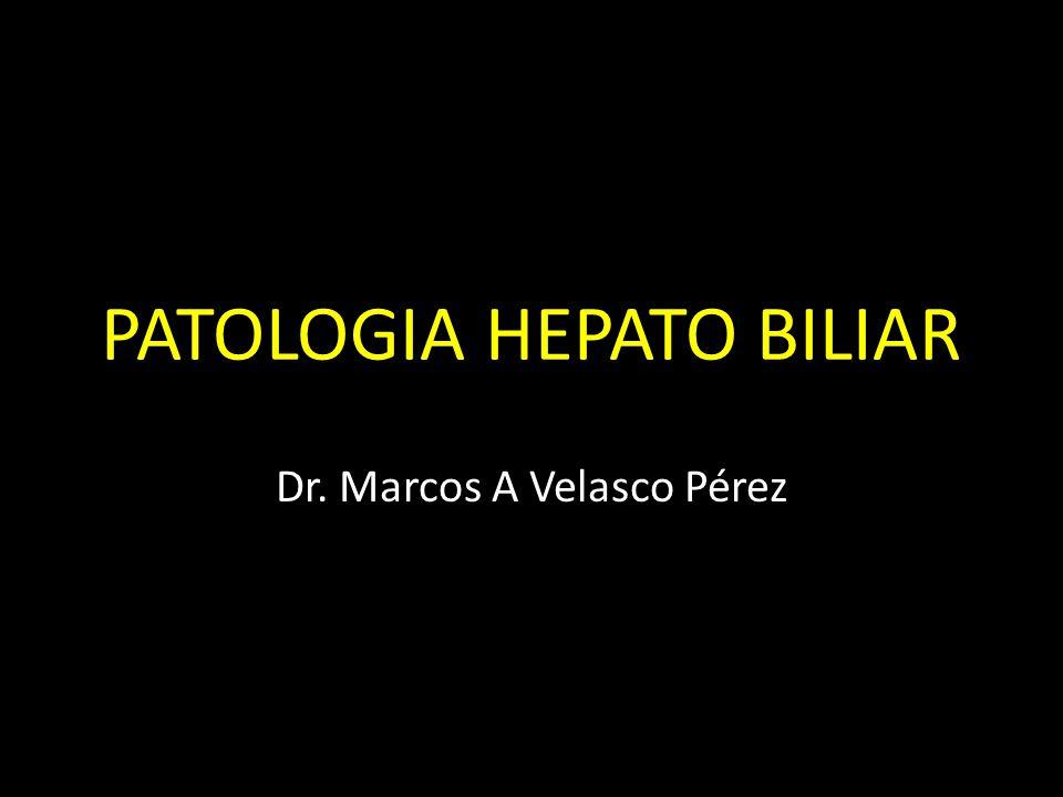 PATOLOGIA HEPATO BILIAR