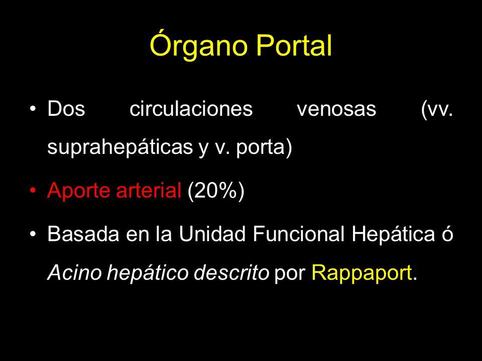 Órgano Portal Dos circulaciones venosas (vv. suprahepáticas y v. porta) Aporte arterial (20%)