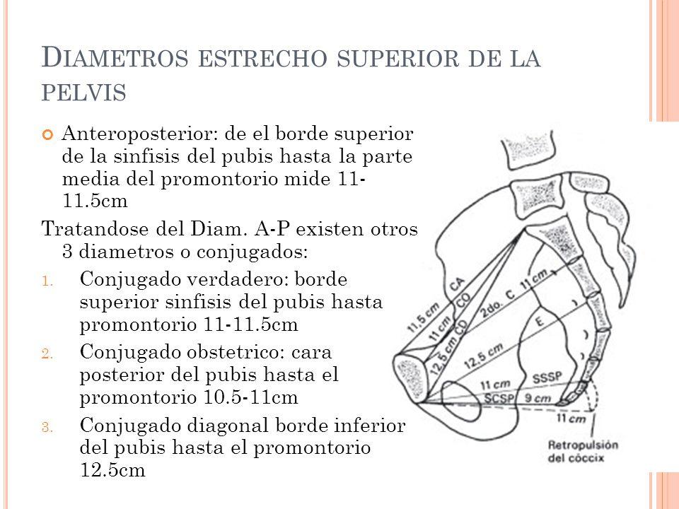 Diametros estrecho superior de la pelvis