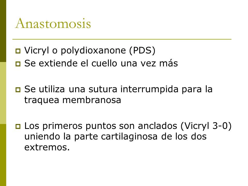 Anastomosis Vicryl o polydioxanone (PDS)