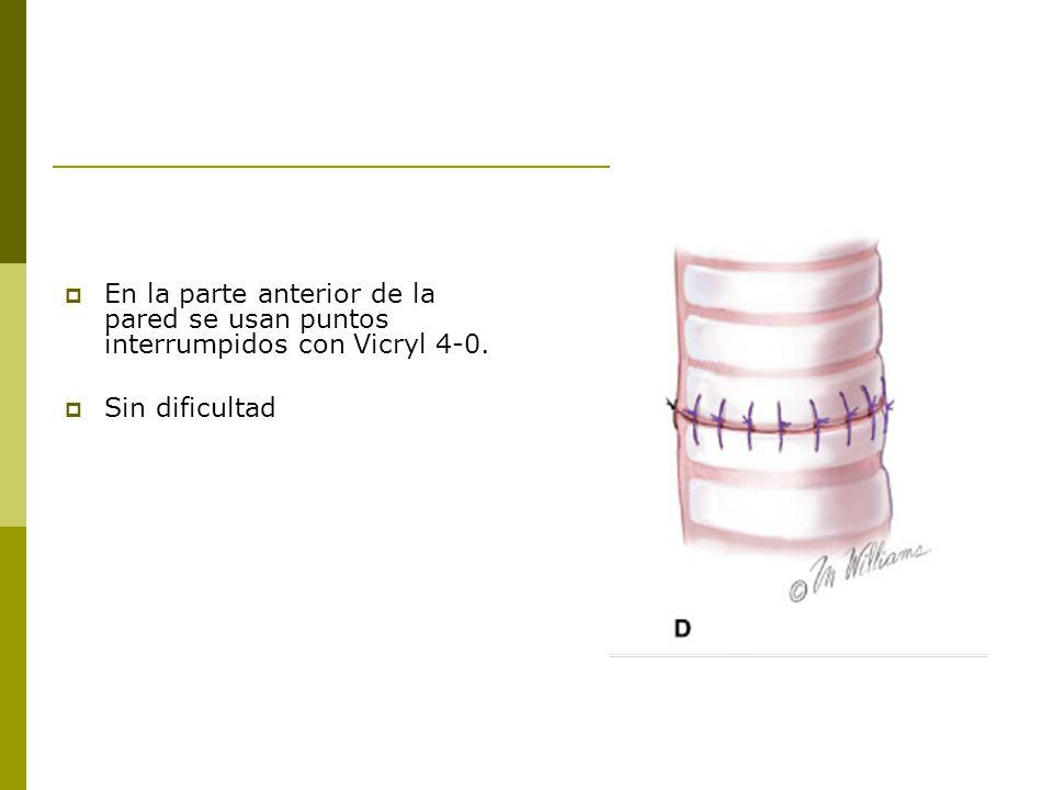 En la parte anterior de la pared se usan puntos interrumpidos con Vicryl 4-0.