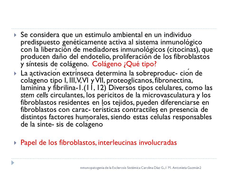 Papel de los fibroblastos, interleucinas involucradas