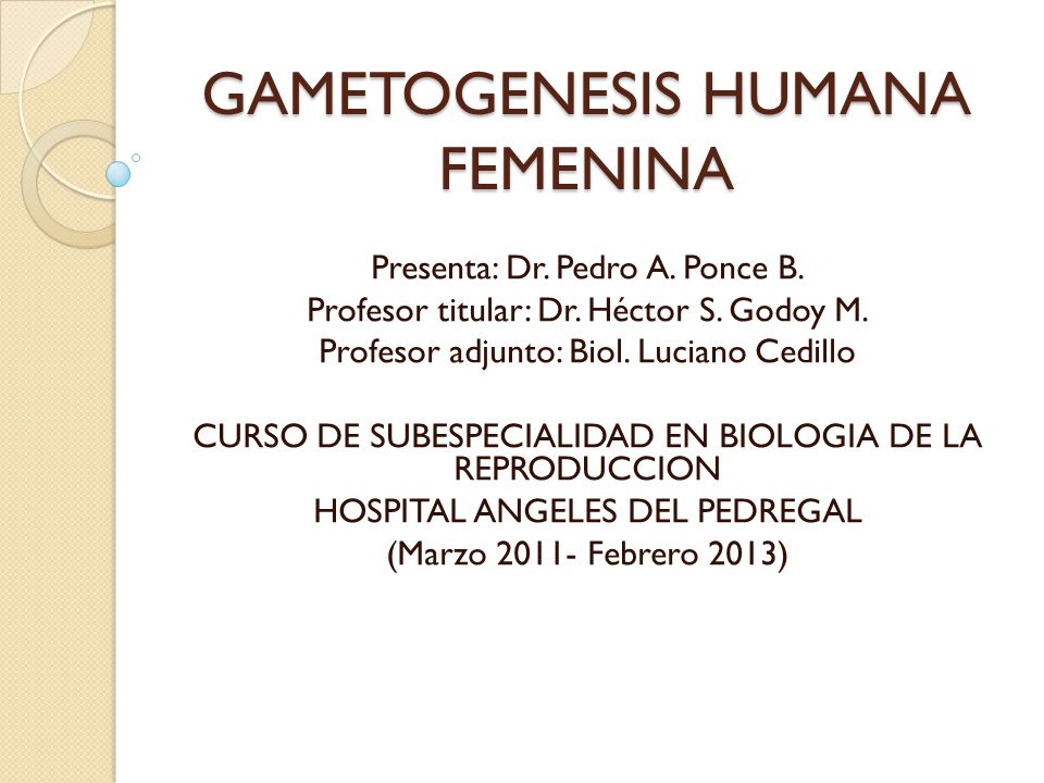 GAMETOGENESIS HUMANA FEMENINA