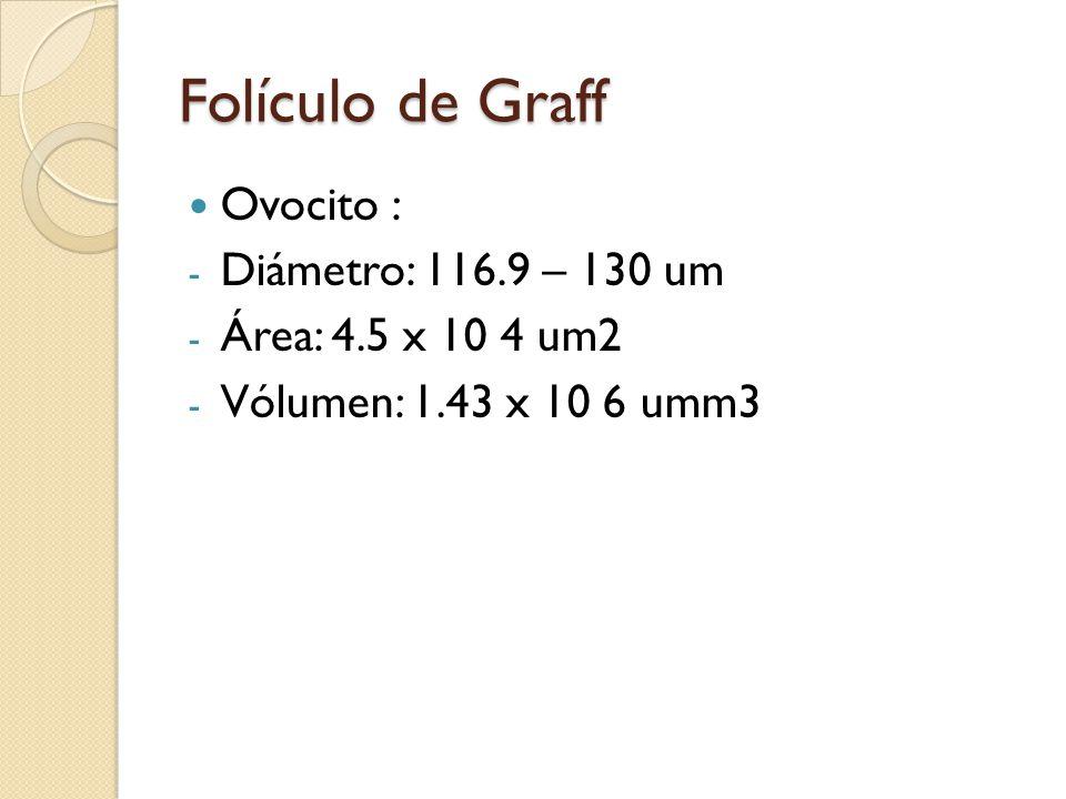 Folículo de Graff Ovocito : Diámetro: 116.9 – 130 um
