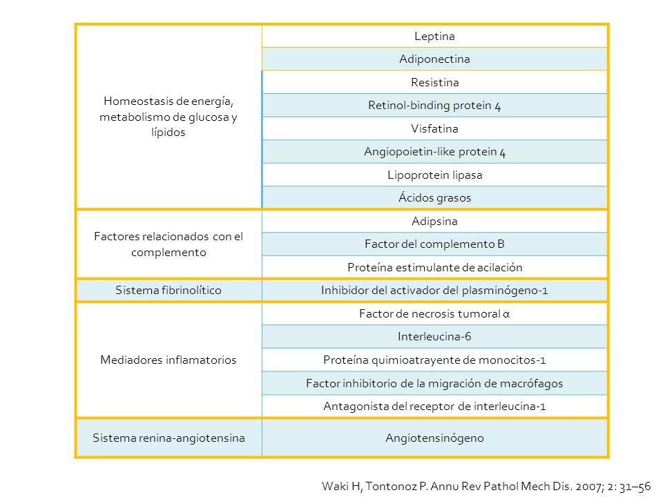 Homeostasis de energía, metabolismo de glucosa y lípidos Leptina