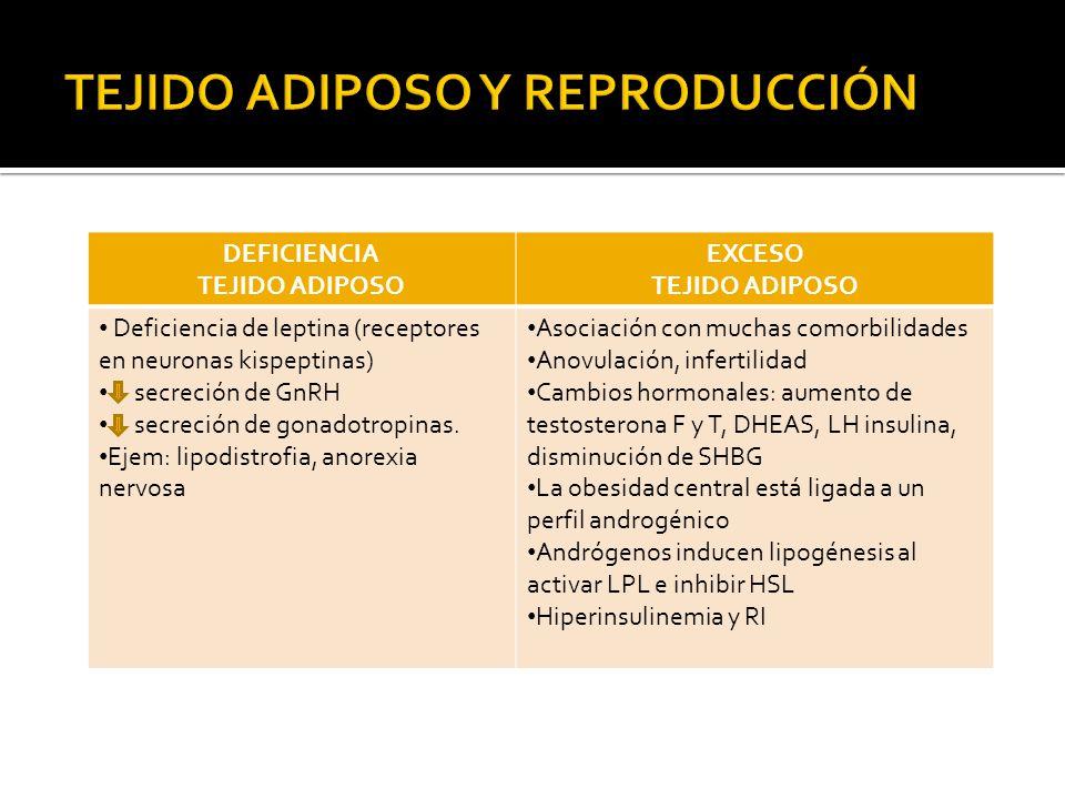 TEJIDO ADIPOSO Y REPRODUCCIÓN