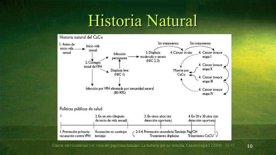 Historia Natural Cáncer cervicouterino y el virus del papiloma humano.