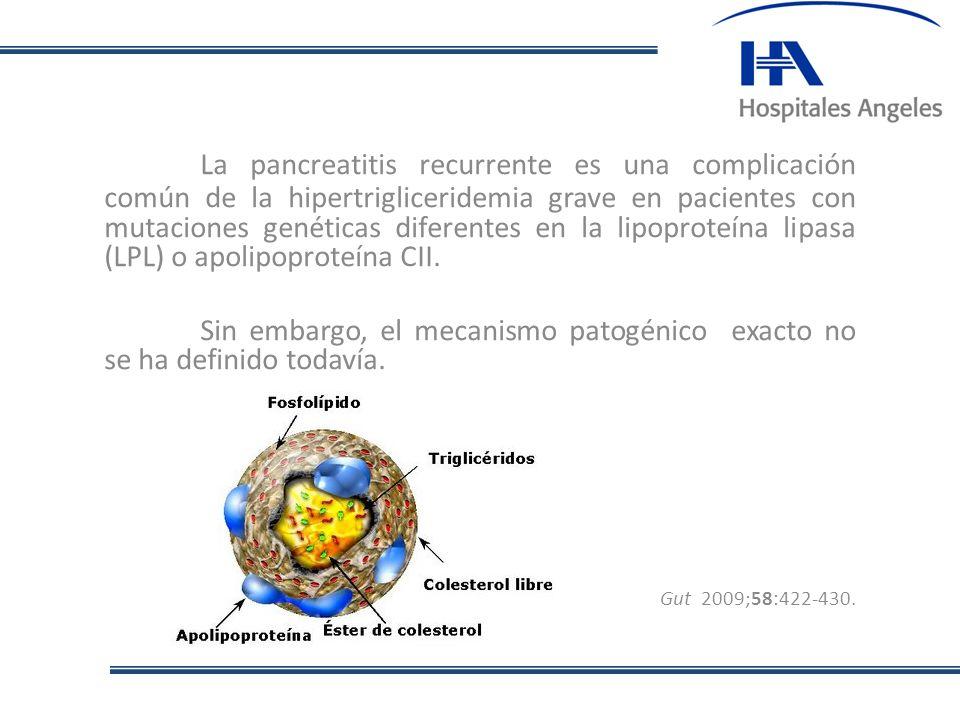 La pancreatitis recurrente es una complicación común de la hipertrigliceridemia grave en pacientes con mutaciones genéticas diferentes en la lipoproteína lipasa (LPL) o apolipoproteína CII.