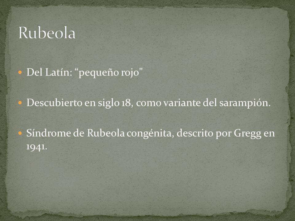 Rubeola Del Latín: pequeño rojo