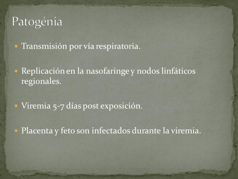 Patogénia Transmisión por vía respiratoria.