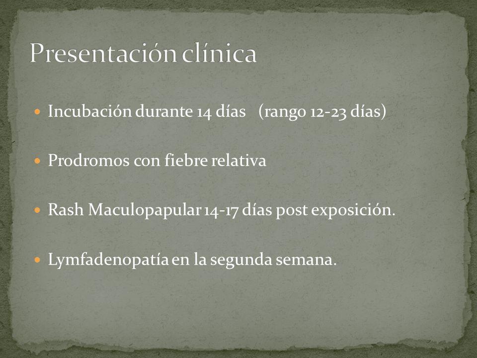 Presentación clínica Incubación durante 14 días (rango 12-23 días)