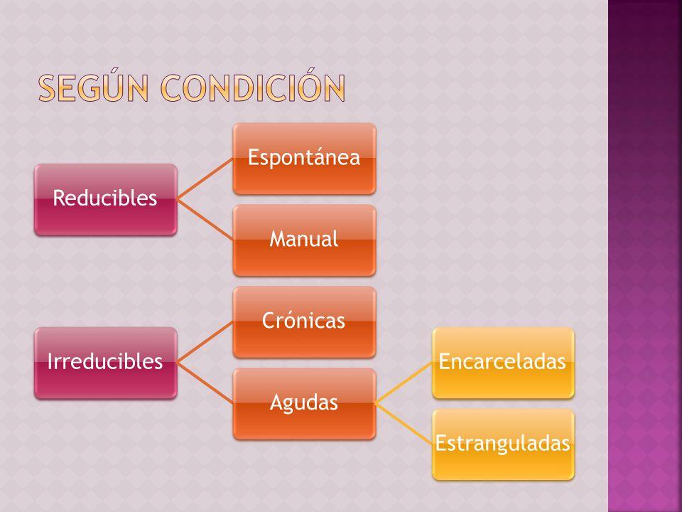 Según condición Reducibles Espontánea Manual Irreducibles Crónicas