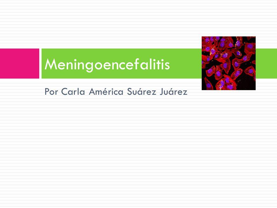 Meningoencefalitis Por Carla América Suárez Juárez