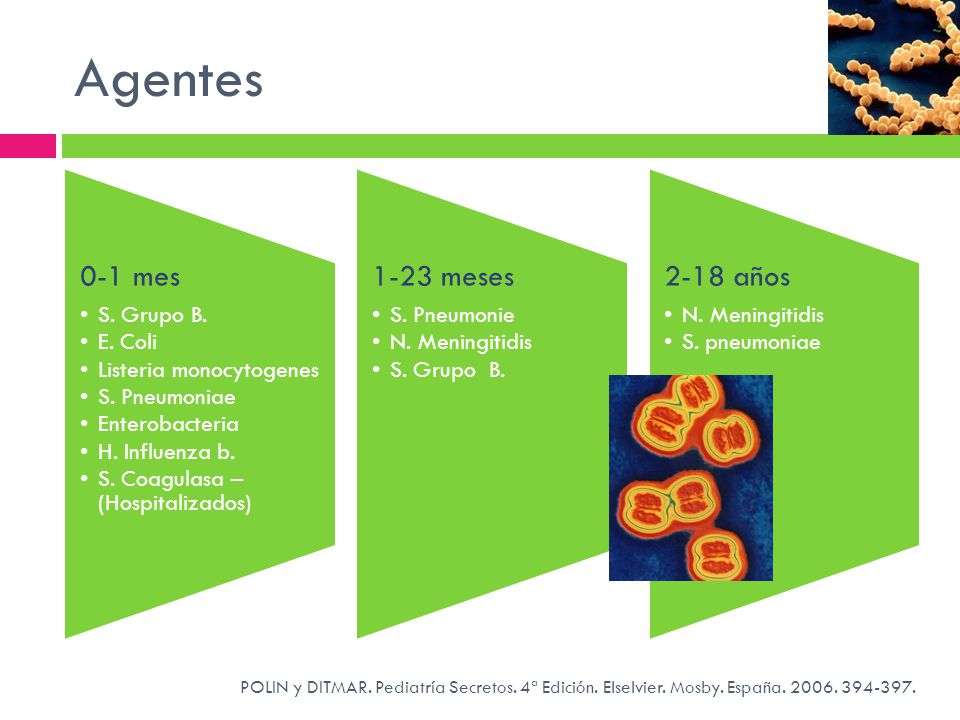 Agentes 0-1 mes. S. Grupo B. E. Coli. Listeria monocytogenes. S. Pneumoniae. Enterobacteria. H. Influenza b.