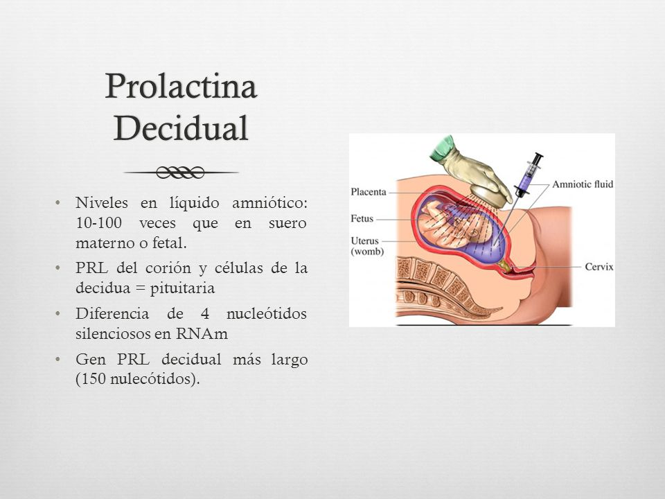 Prolactina Decidual Niveles en líquido amniótico: 10-100 veces que en suero materno o fetal. PRL del corión y células de la decidua = pituitaria.
