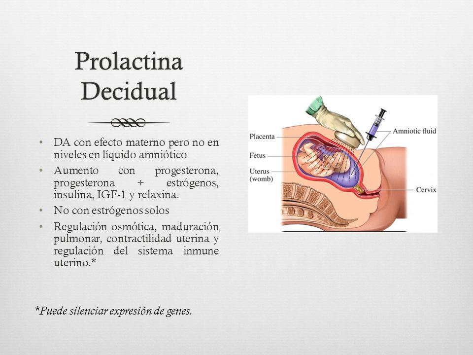 Prolactina Decidual *Puede silenciar expresión de genes.