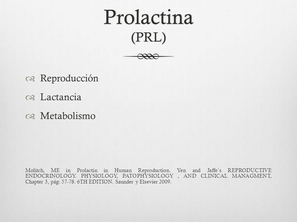 Prolactina (PRL) Reproducción Lactancia Metabolismo