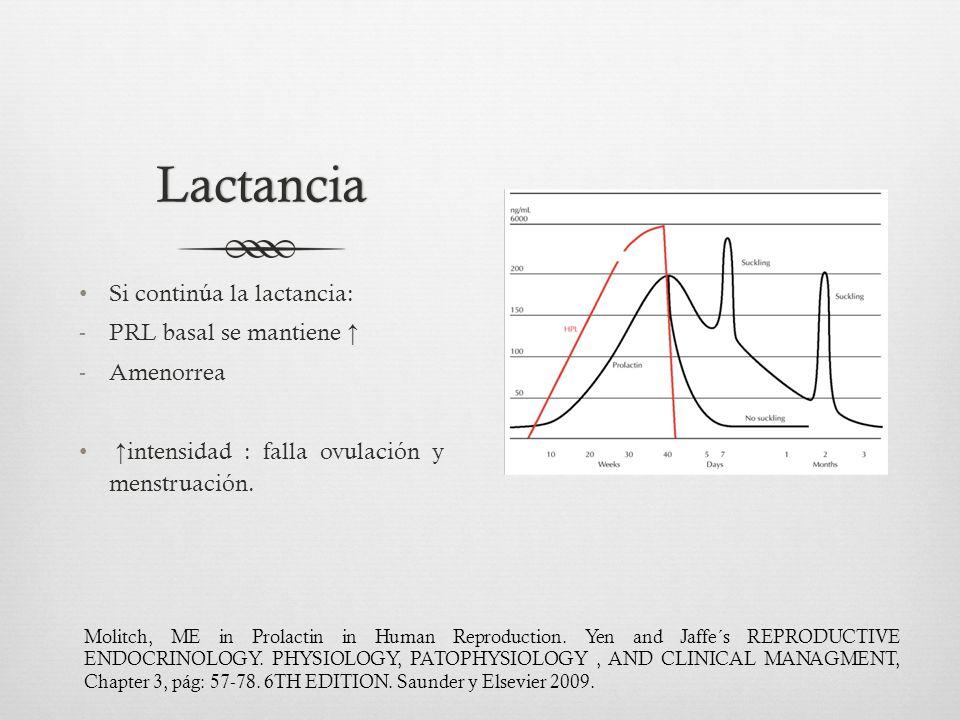 Lactancia Si continúa la lactancia: PRL basal se mantiene ↑ Amenorrea