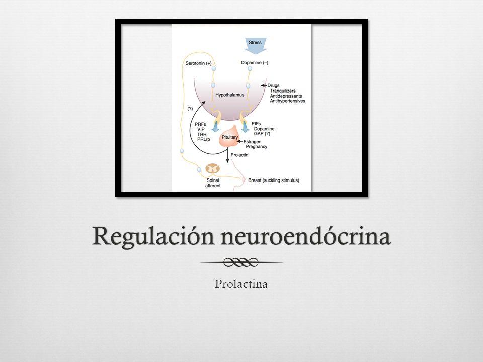 Regulación neuroendócrina