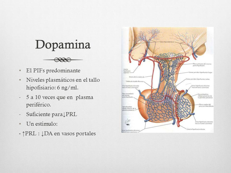 Dopamina El PIFs predominante