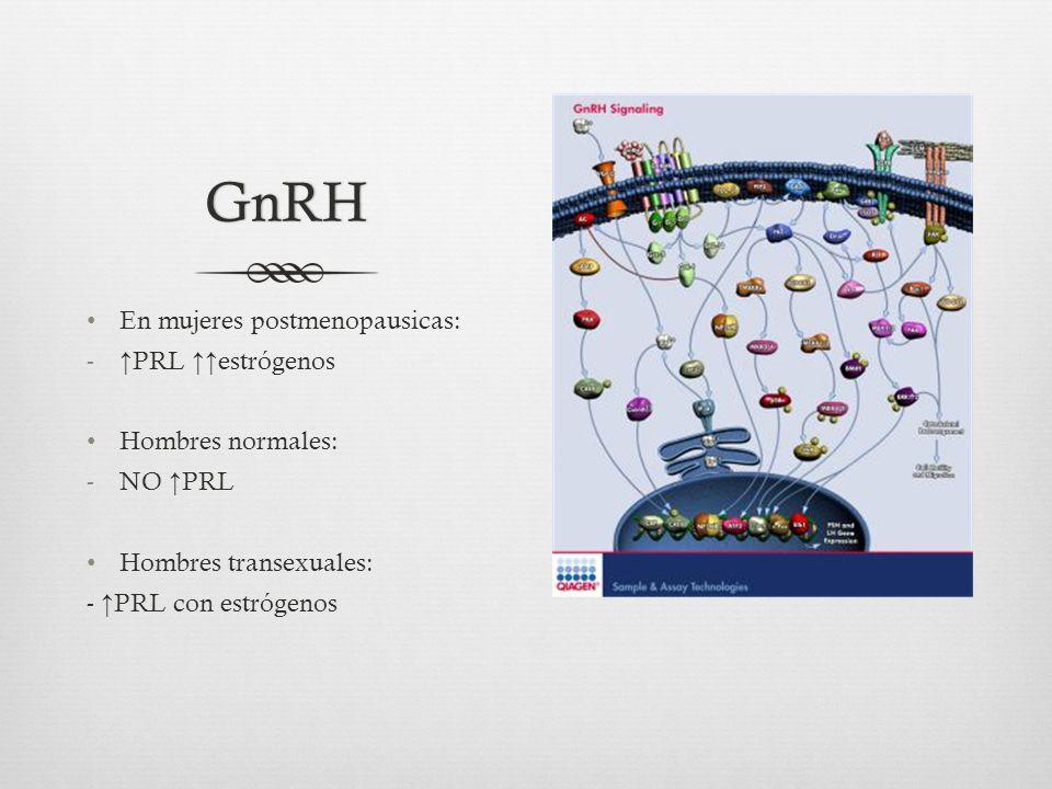 GnRH En mujeres postmenopausicas: ↑PRL ↑↑estrógenos Hombres normales: