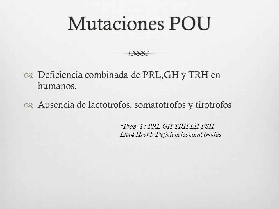 Mutaciones POU Deficiencia combinada de PRL,GH y TRH en humanos.