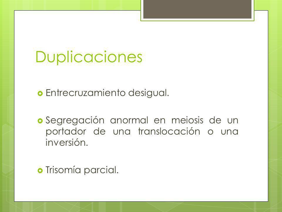 Duplicaciones Entrecruzamiento desigual.