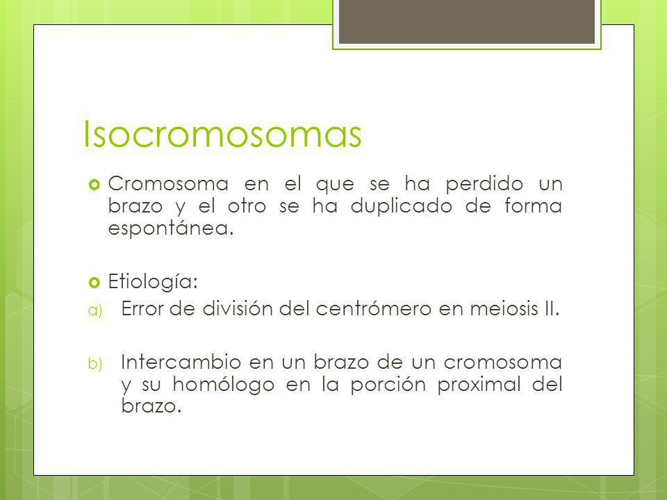 Isocromosomas Cromosoma en el que se ha perdido un brazo y el otro se ha duplicado de forma espontánea.