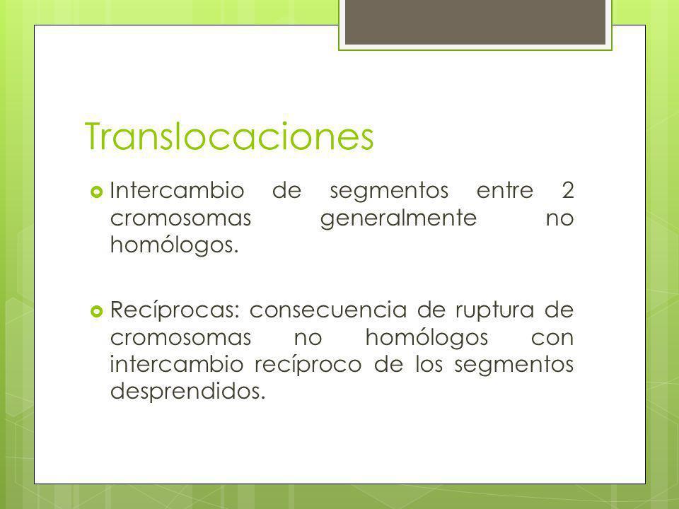 Translocaciones Intercambio de segmentos entre 2 cromosomas generalmente no homólogos.