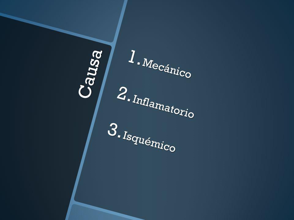 Mecánico Inflamatorio Isquémico Causa