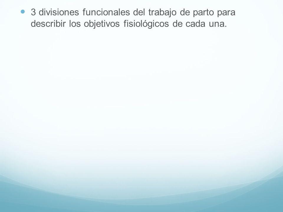 3 divisiones funcionales del trabajo de parto para describir los objetivos fisiológicos de cada una.