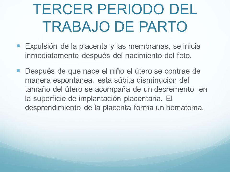 TERCER PERIODO DEL TRABAJO DE PARTO