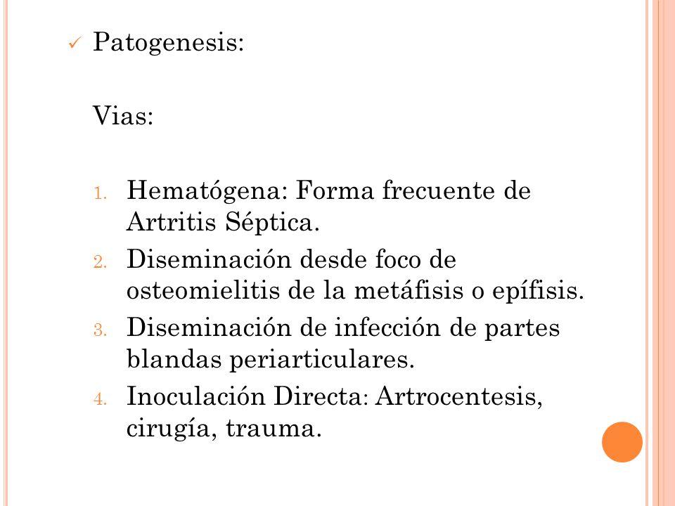 Patogenesis: Vias: Hematógena: Forma frecuente de Artritis Séptica. Diseminación desde foco de osteomielitis de la metáfisis o epífisis.