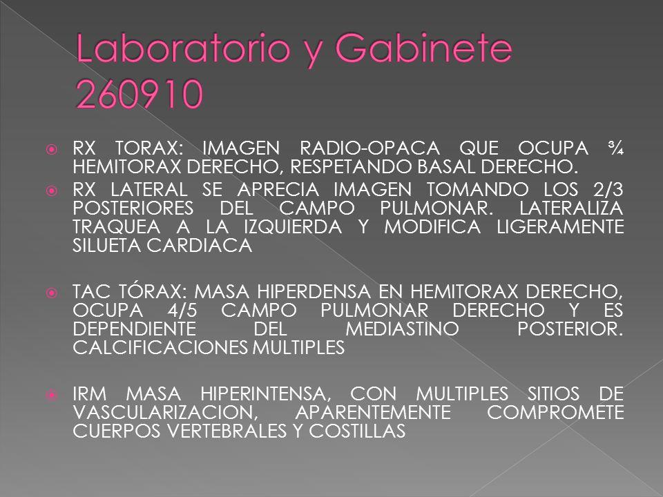 Laboratorio y Gabinete 260910