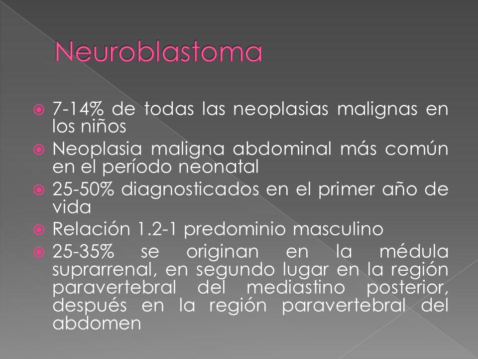Neuroblastoma 7-14% de todas las neoplasias malignas en los niños