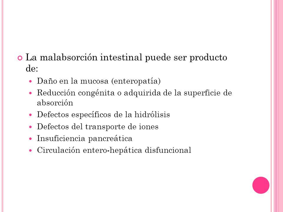 La malabsorción intestinal puede ser producto de: