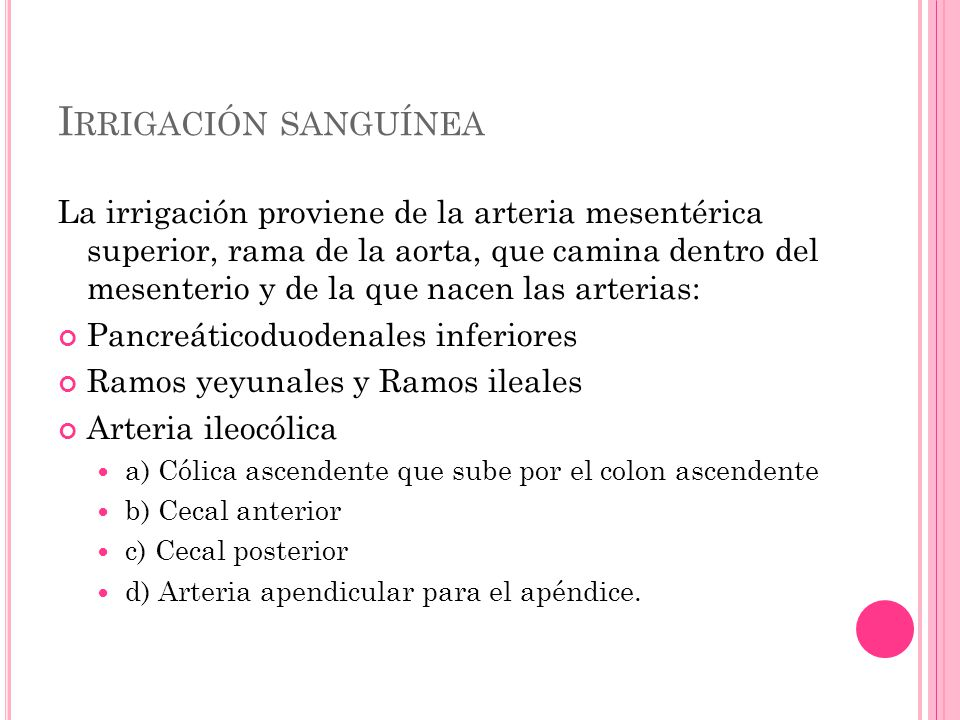 Irrigación sanguínea