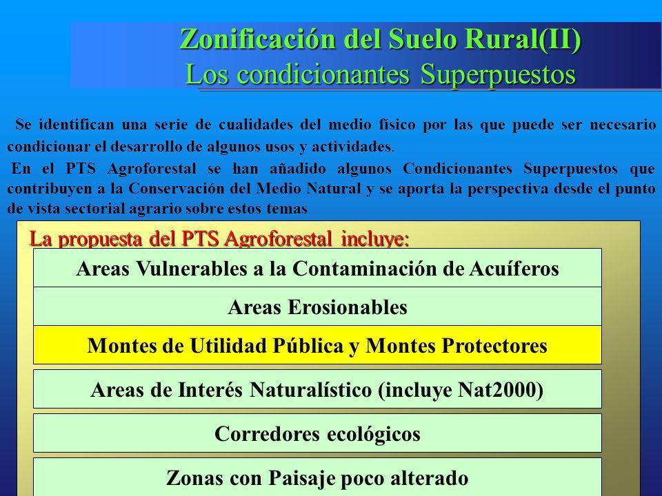 Zonificación del Suelo Rural(II)
