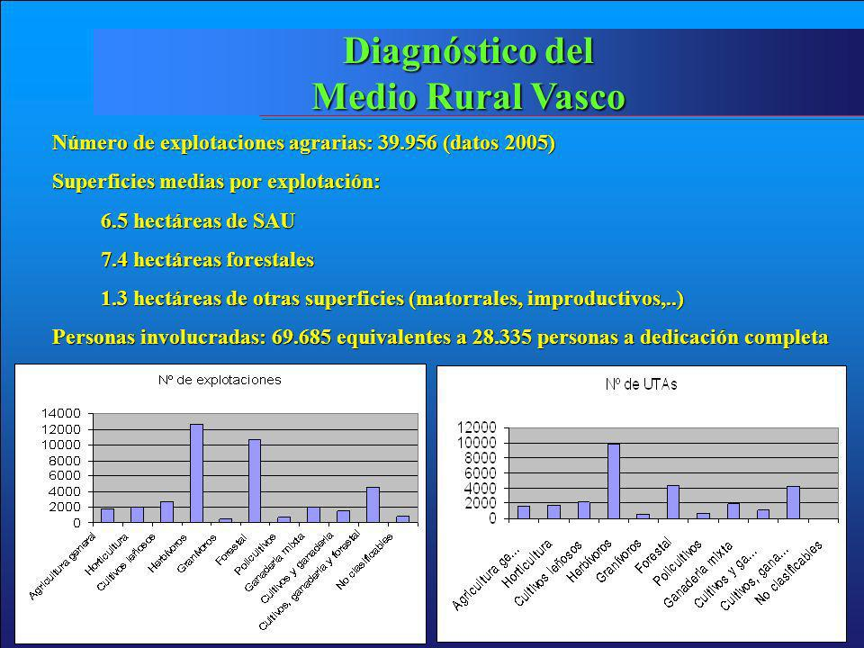 Diagnóstico del Medio Rural Vasco