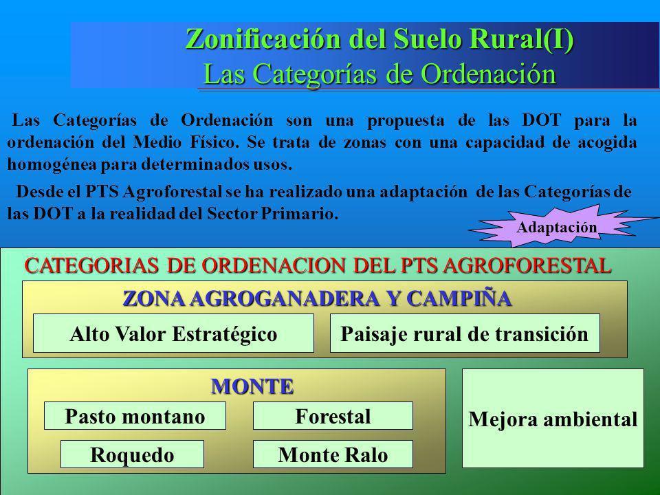 Zonificación del Suelo Rural(I)
